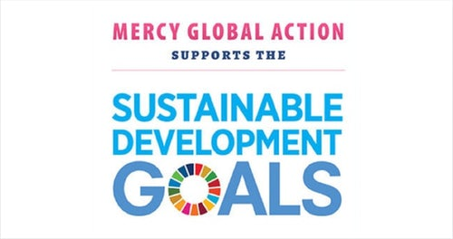 Update on the Sustainable Development Goals