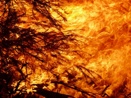 MIA Prayer intention: Victorian Bushfires