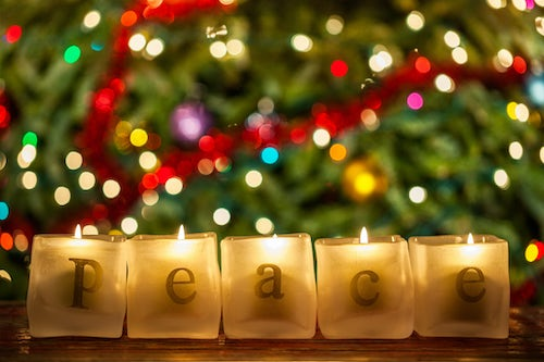 MIA Prayer Intention: Peace on Earth, Goodwill to All Creation