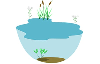 What is ecosystem-based adaptation?