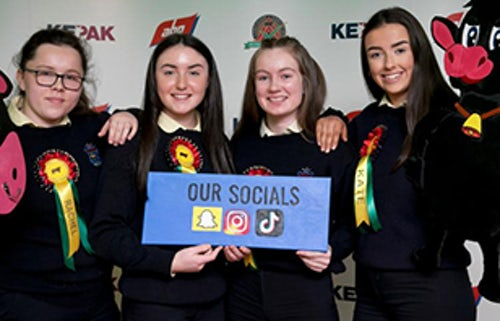 Mercy Ballymahon Students Chosen for National Calf-rearing Competition