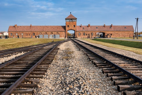 'Auschwitz: A Reflection' by Carol Rittner rsm