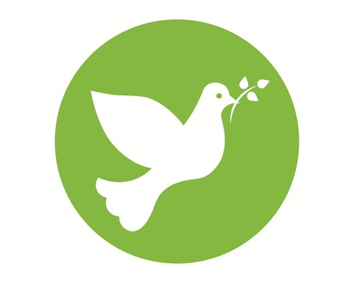 Pope Francis' Message for 53rd World Day of Peace