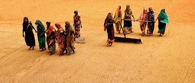 New wave of famine could sweep the globe, overwhelming nations already weakened by years of conflict, warn UN officials