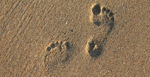 Tracing the Mercy Footprint