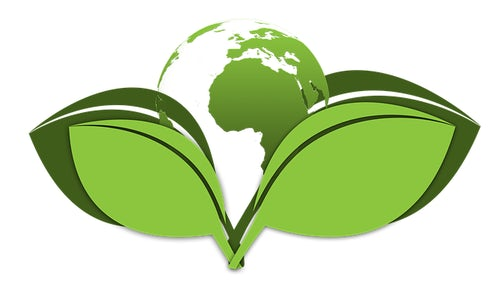 Join the Global Laudato Si' Prayer Services