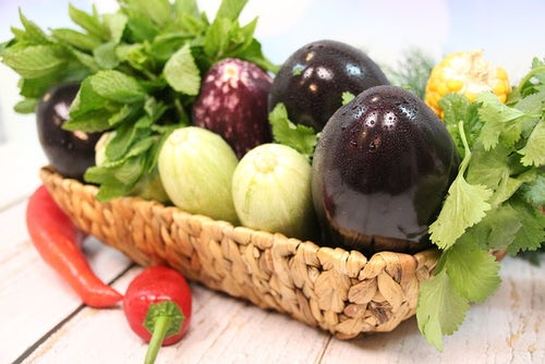 18 June, Sustainable Gastronomy Day: Short Careful Steps for a Greener Future