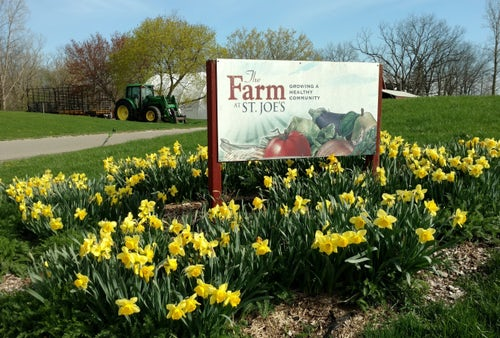 How the Farm at St. Joe's Transforms Its Health System