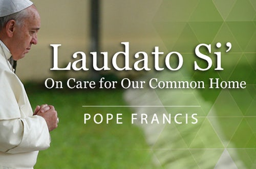 Do You Hear the Cry of the Poor? Mercy Global Action's Participation in Laudato Si' Week