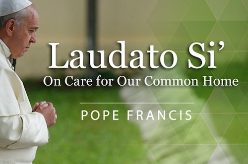Read & Reflect on Laudato Si'