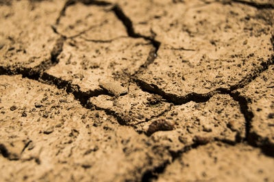 MIA Prayer Intention: Australia's National Prayer Campaign to End Drought